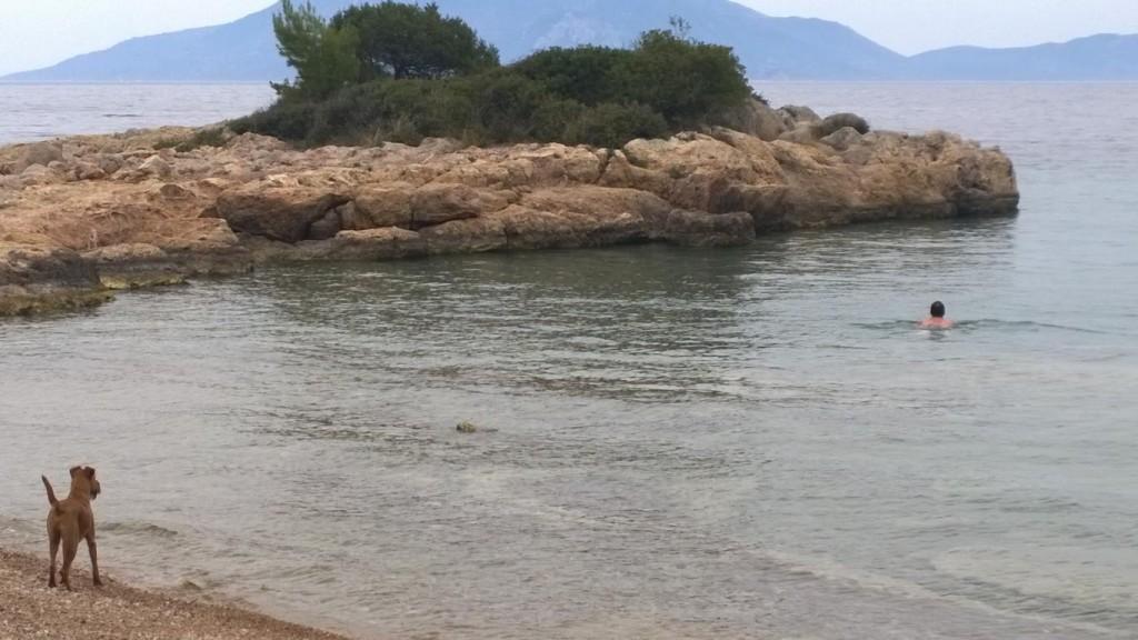 Griechenland 2016 (204)