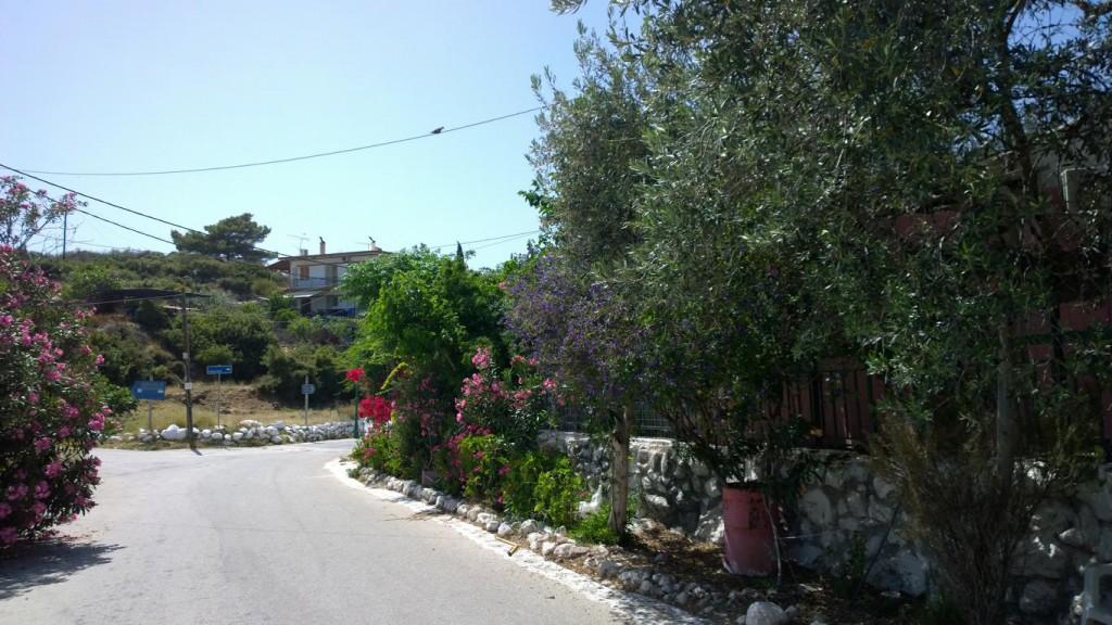 Griechenland 2016 (272)