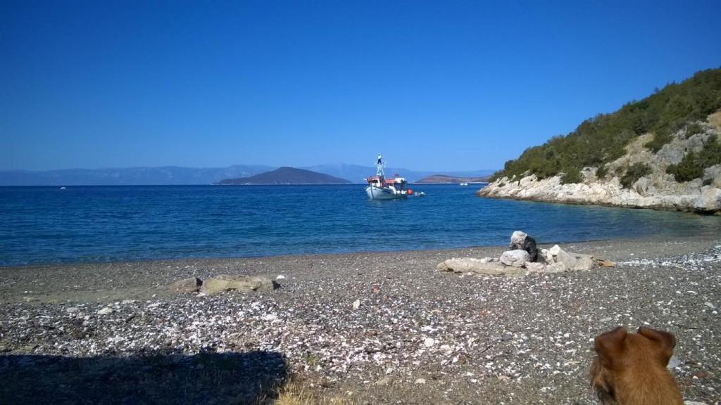 Griechenland 2016 (491)