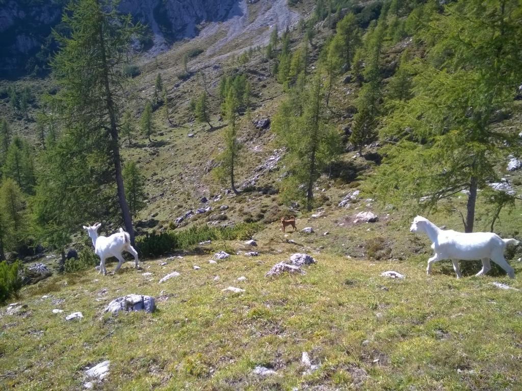 Nord Italien 2016 (274)